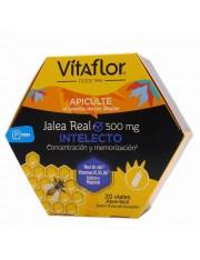 Vitaflor intelecto 20+4 viales REGALO DE JALEA REAL DEFENSAS