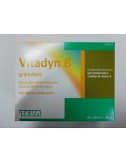 VITADYN B GRANULADO 40 SOBRES 1,2 G