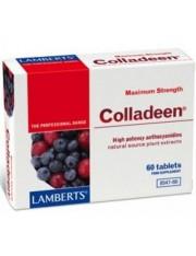 Colladeen maxima potencia (antocianidas 160mg) 60 tabletas lamberts