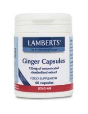 Jengibre 1200 mg(ext.concentrado equivalente a 14400 mg.raiz jengibre fresca) 60 capsulas lamberts