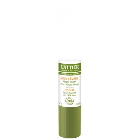 Cattier balsamo labial 4 g