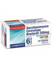 SACCHAROMYCES CEREVISIAE BOULARDII 300 MG 30 CAPSULAS LAMBERTS
