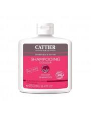 cattier champu color cabello teñido 250 ml